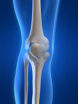 testépítés és ízületi fájdalmak)