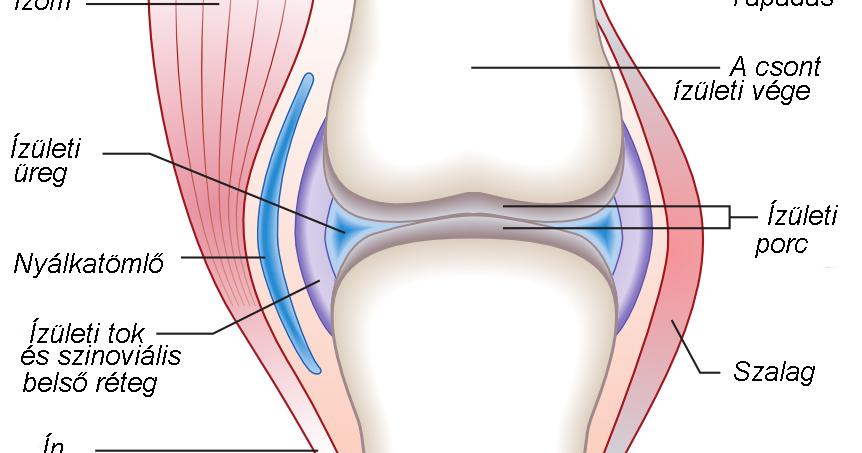 ízületi állapot artrózissal)
