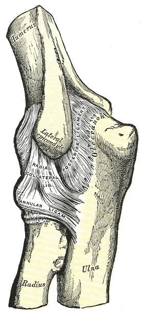 a könyökízület ízületi gyulladásának típusai)