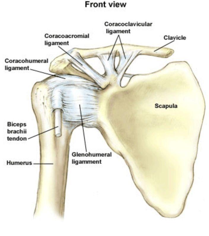 doxiciklin ízületi fájdalom esetén a bal bokaízület duzzanata