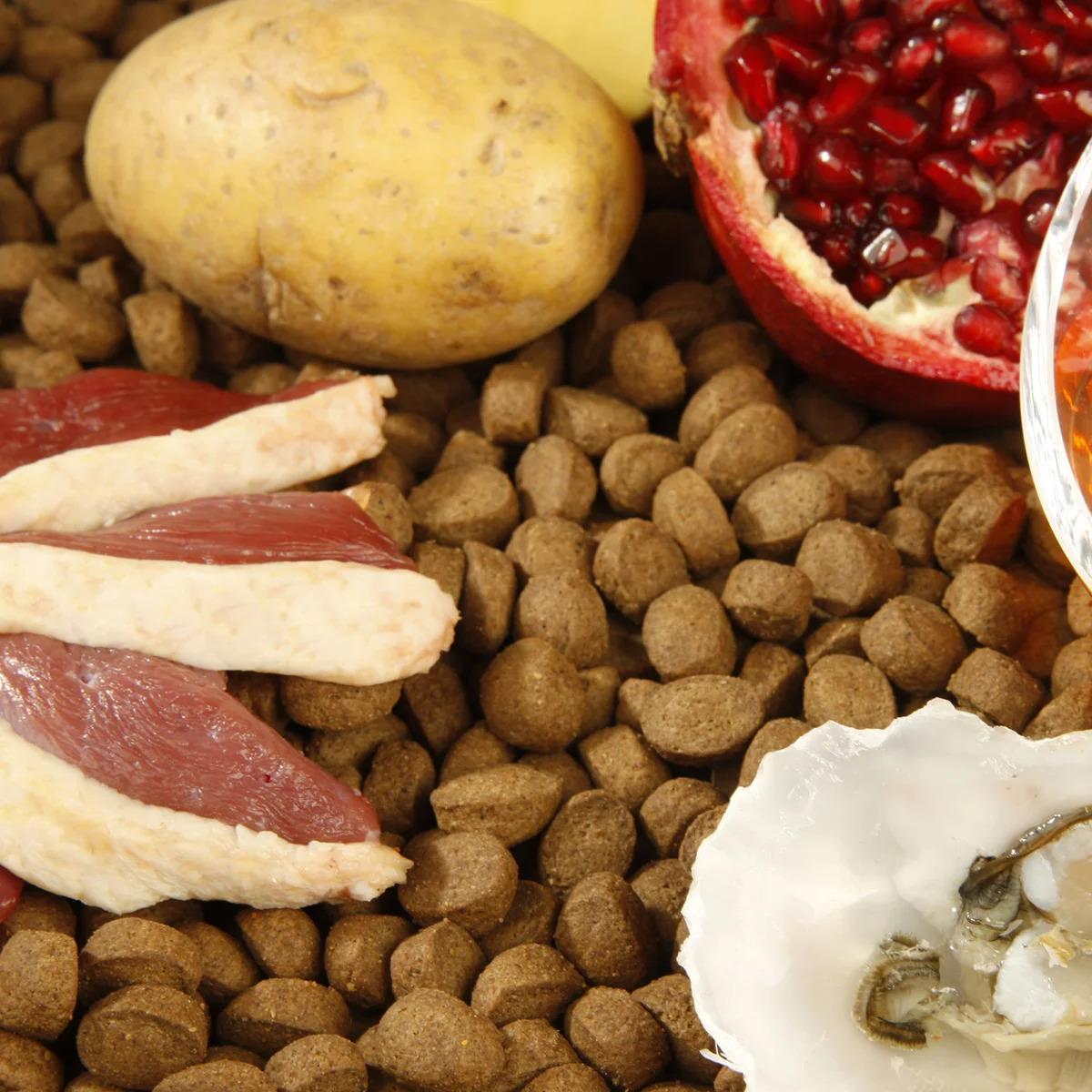 glükózaminban és kondroitinben gazdag ételek)