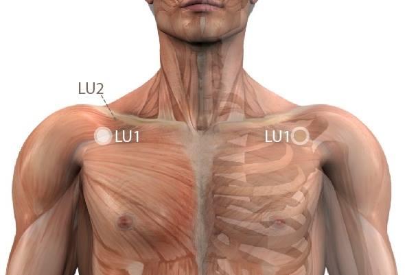 váll neurózis kezelés eukaliptusz ízületi kezelés