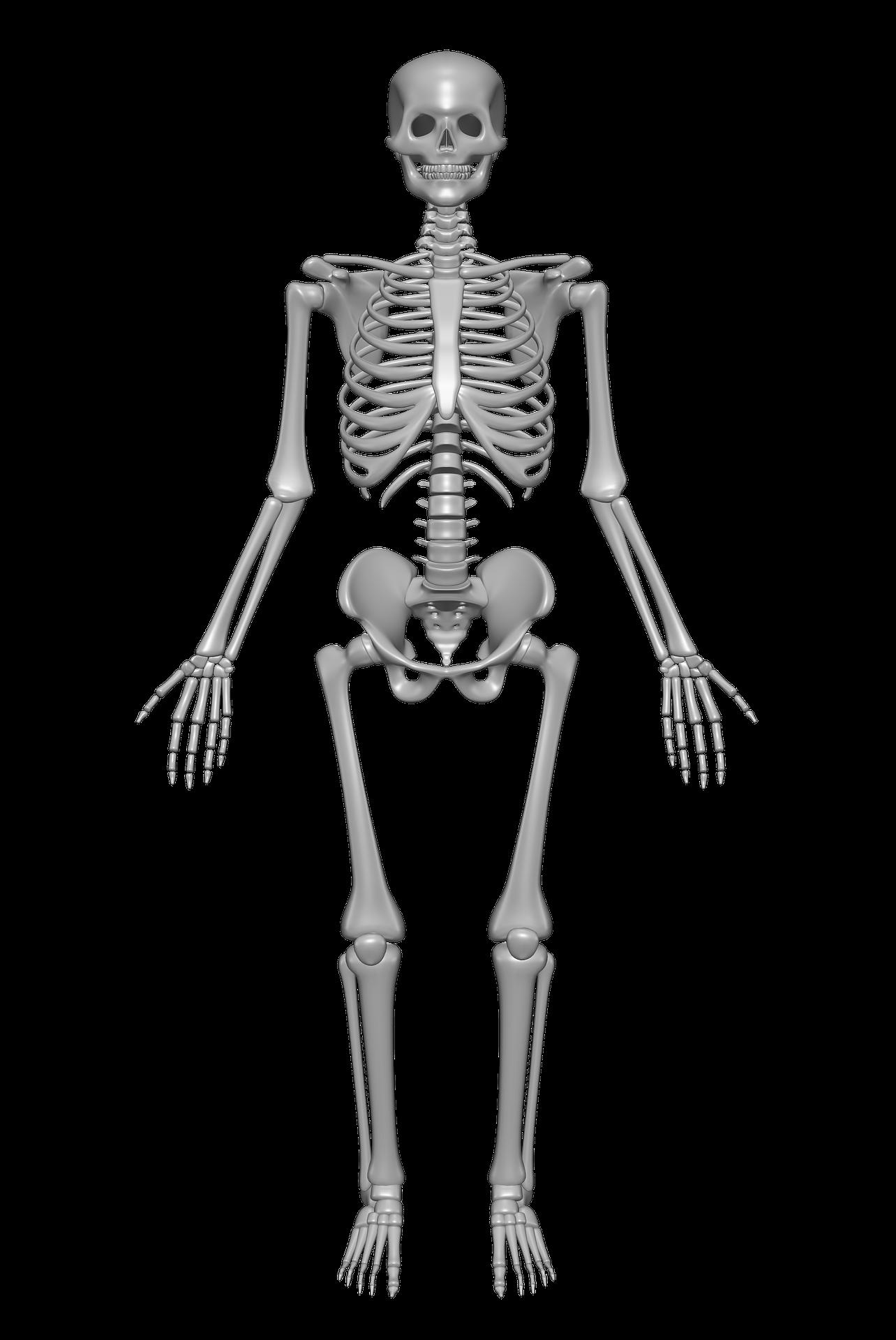 csont törékenység és ízületi betegségek szórakoztató közös kezelés