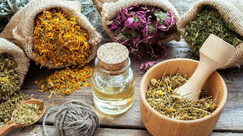 gyógynövények ízületi betegségek kezelésére)
