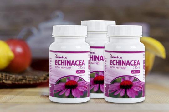 Bioextra echinacea cseppek, 50 ml | Bioextra | Biosziget