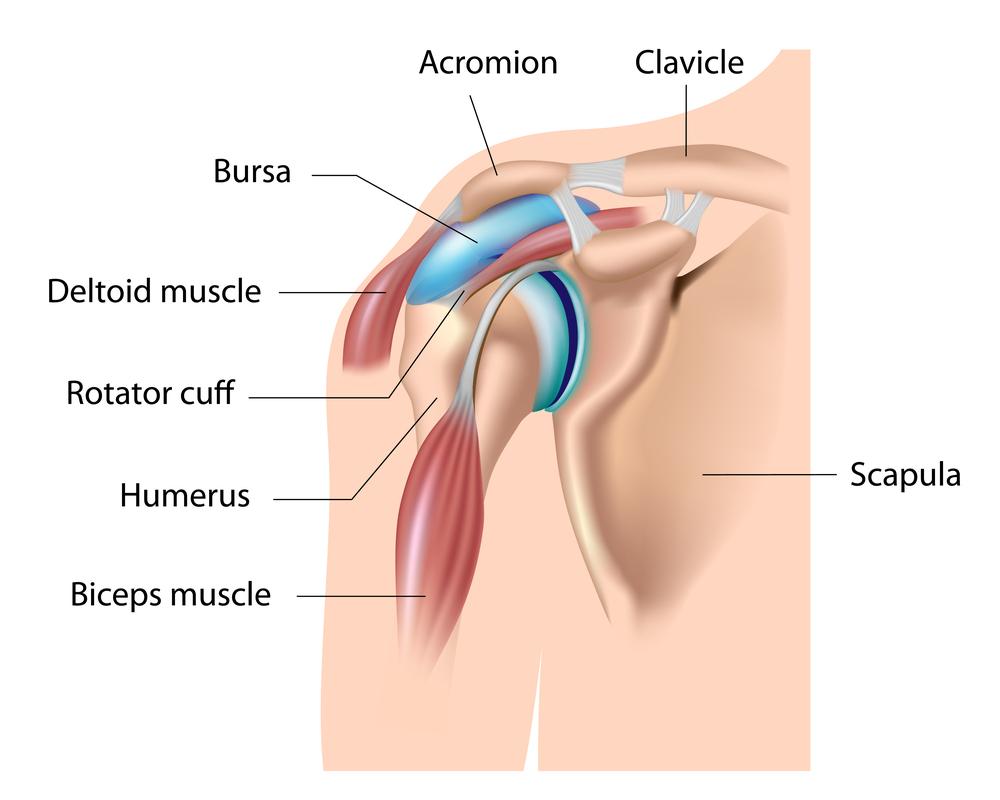 vállízületi fájdalmak kezelése)