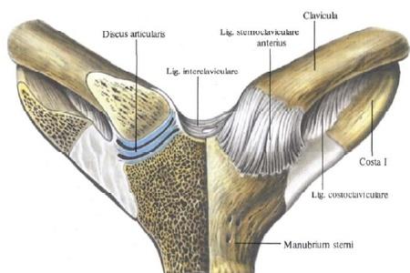 clavicularis arthrosis szegycsontjának kezelése
