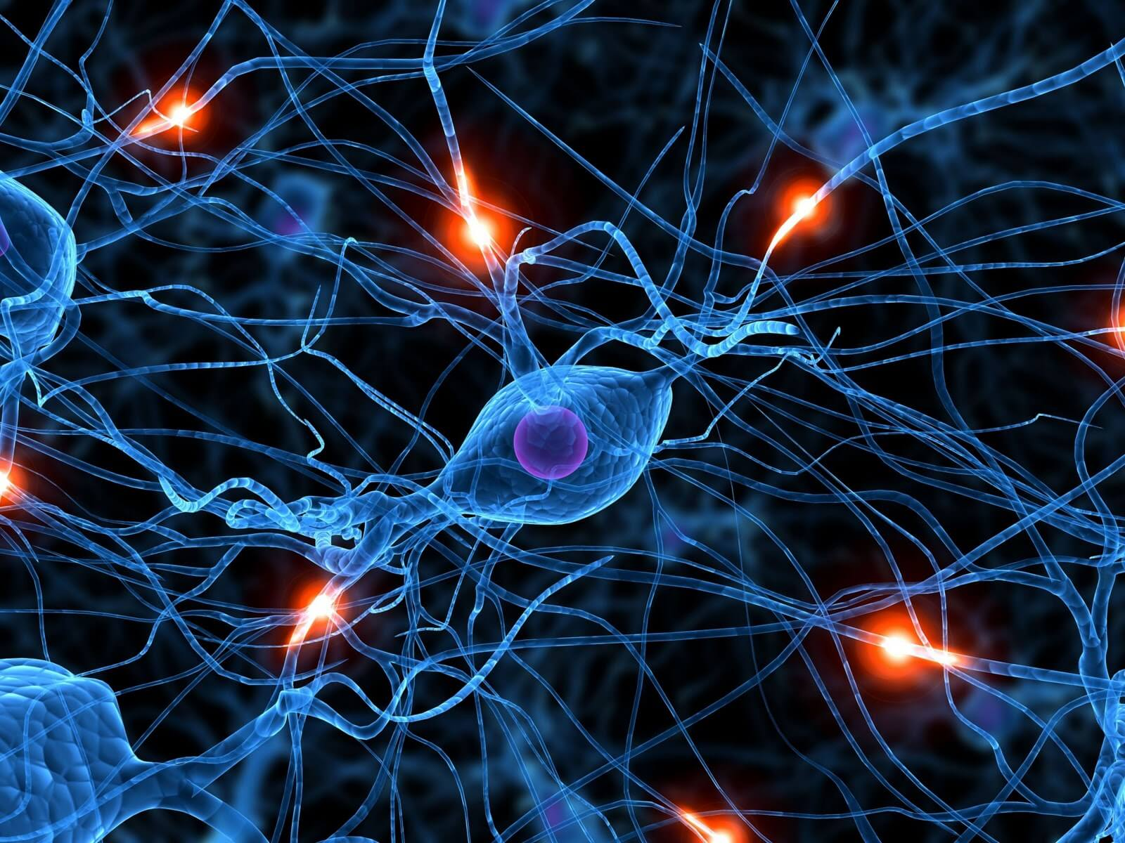 Neuroprotektív gyógyszerek. Egészségügy, orvostudomány és hosszú élettartamú hírek