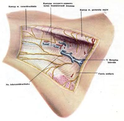 a vállízület supraspinatus izomjának inakárosodása a kar duzzanata a könyökízület törése után