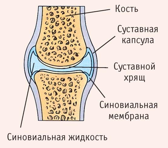 mi a jobb teraflex vagy glükozamin-kondroitin komplex izomfájdalom ízületi csontok