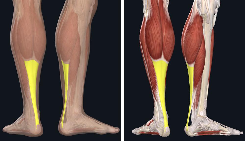 hogyan lehet eltávolítani a fájdalmat a bokaízület artrózisával)