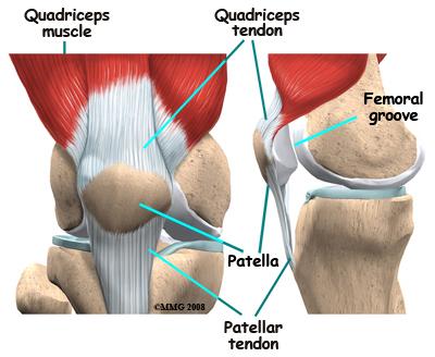 úgy, hogy az ízületek nem fájnak a futás után éles térdfájdalom guggolás közben