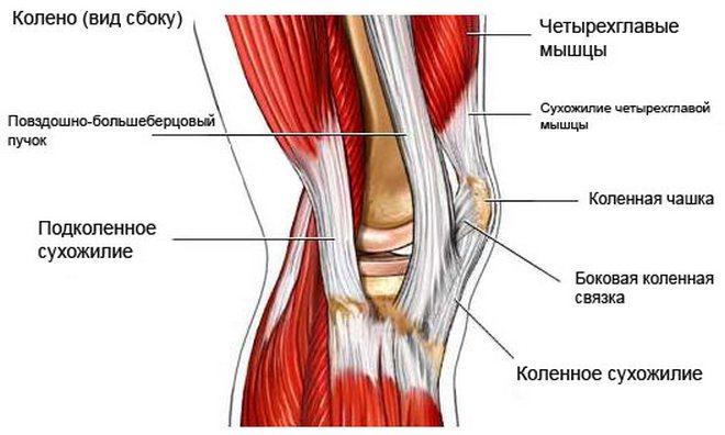 térd ligamentum károsodás tünetei