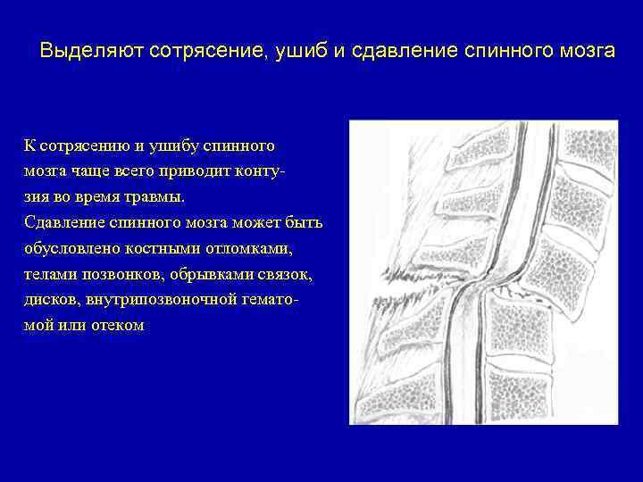 övfájás a térdízületben)