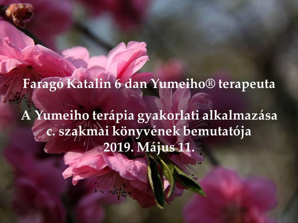 a szent tavasz gyógyítja az ízületeket)