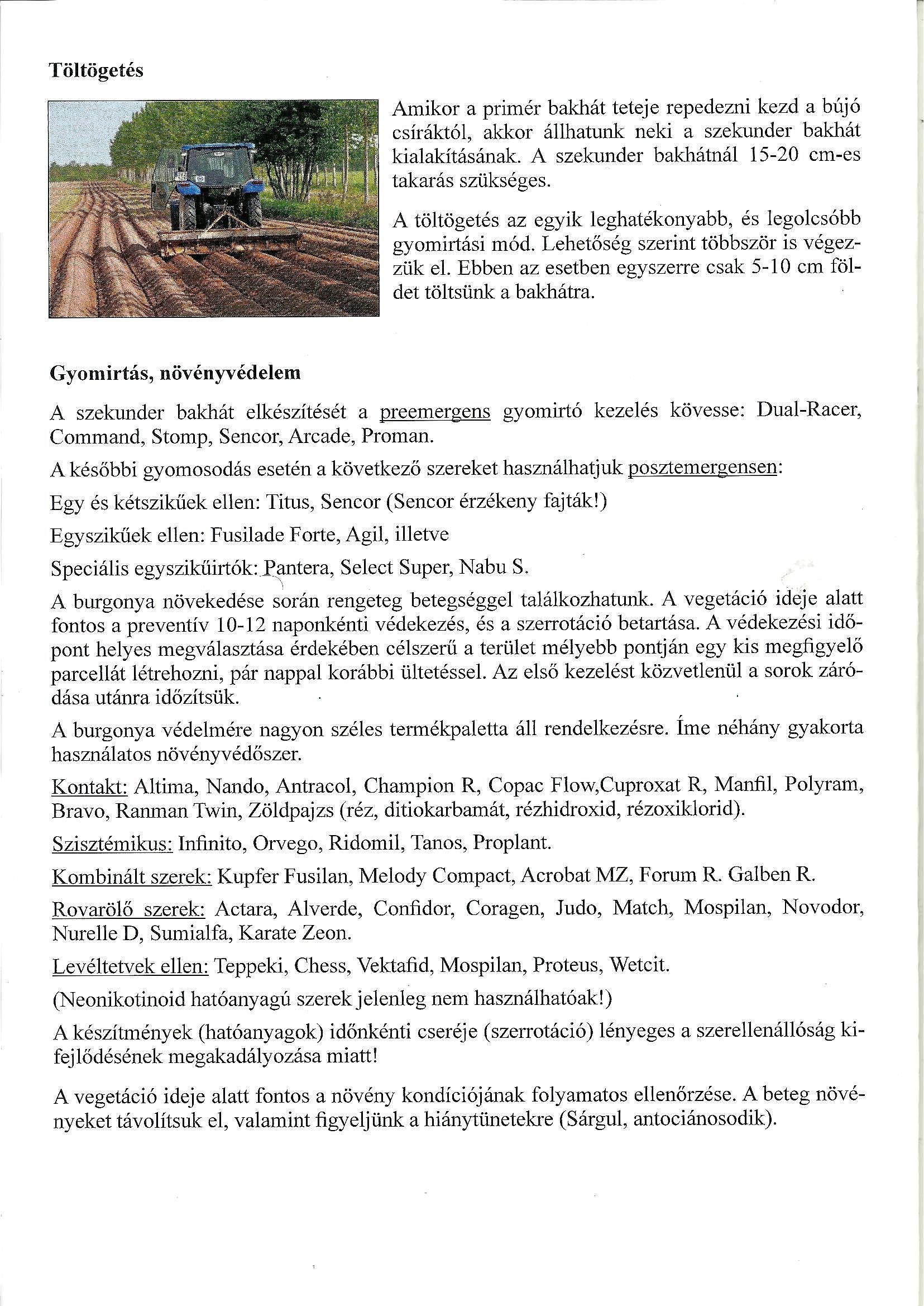 A tarlóburgonya termesztése - Agro Napló - A mezőgazdasági hírportál