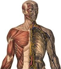 csípő-sprain kezelésére)