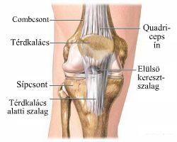 a csuklóízület kialakulása sérülés után