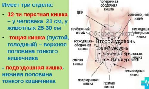 az összes ízületi kezelés listája)