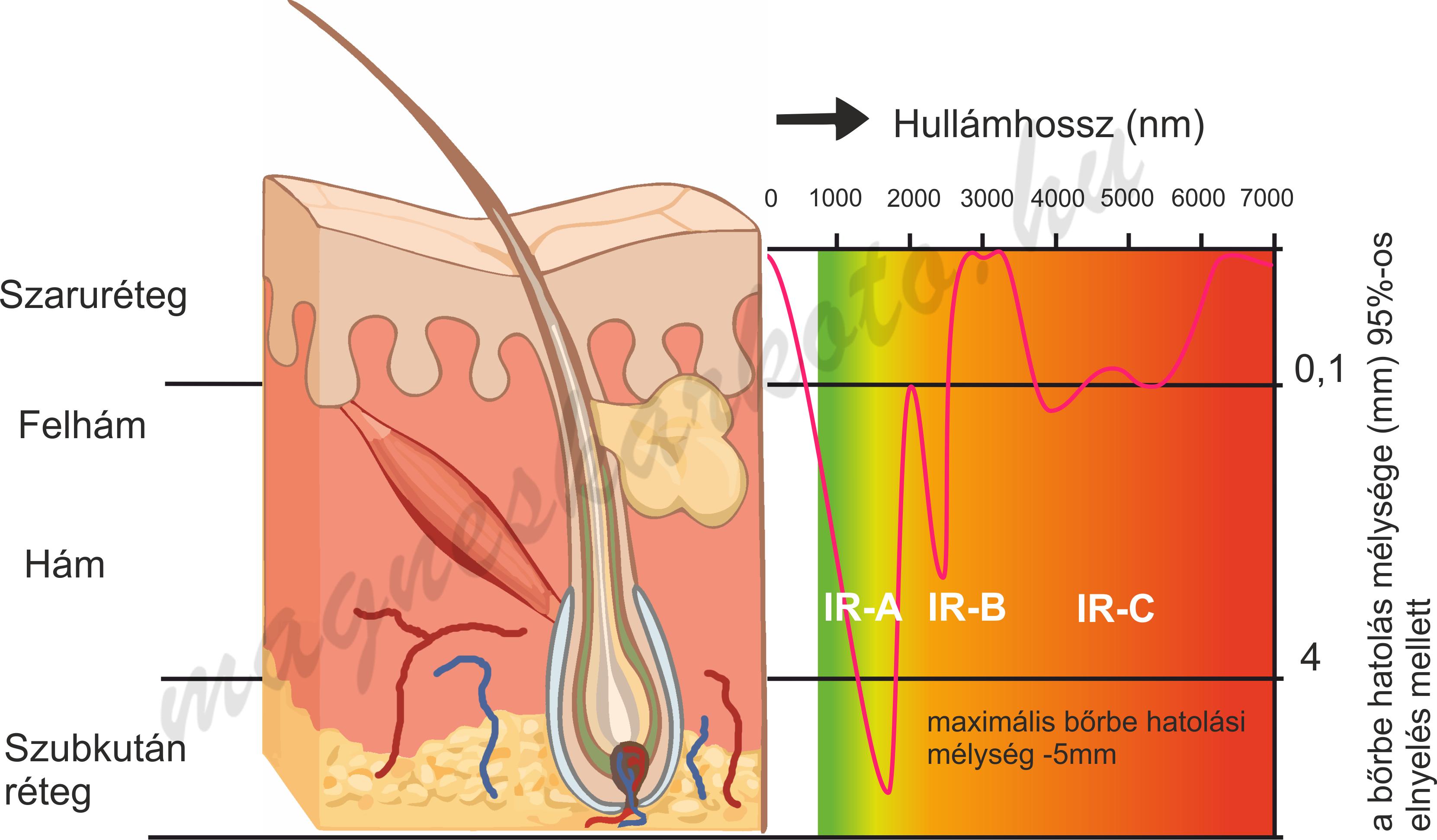 infravörös sugárzás az ízületek kezelésében)