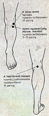 összetört térdfájdalom)