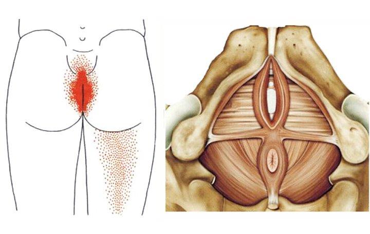 az osteoarthritis kezelése a nito-ban