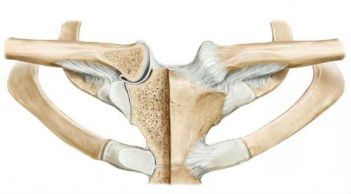 clavicularis arthrosis szegycsontjának kezelése a boka duzzanása egy hétig nem tűnik el