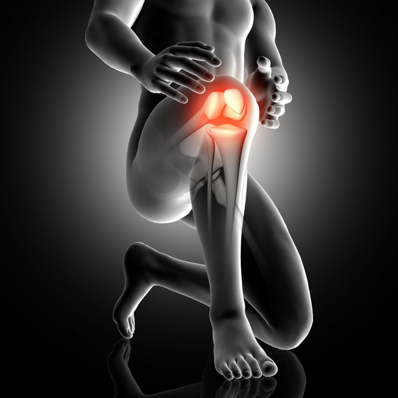 fizomed-arthro térd kezelésére ár kenőcsök az ízületi fájdalmak gyógyítására