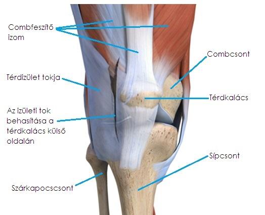 clavicularis arthrosis