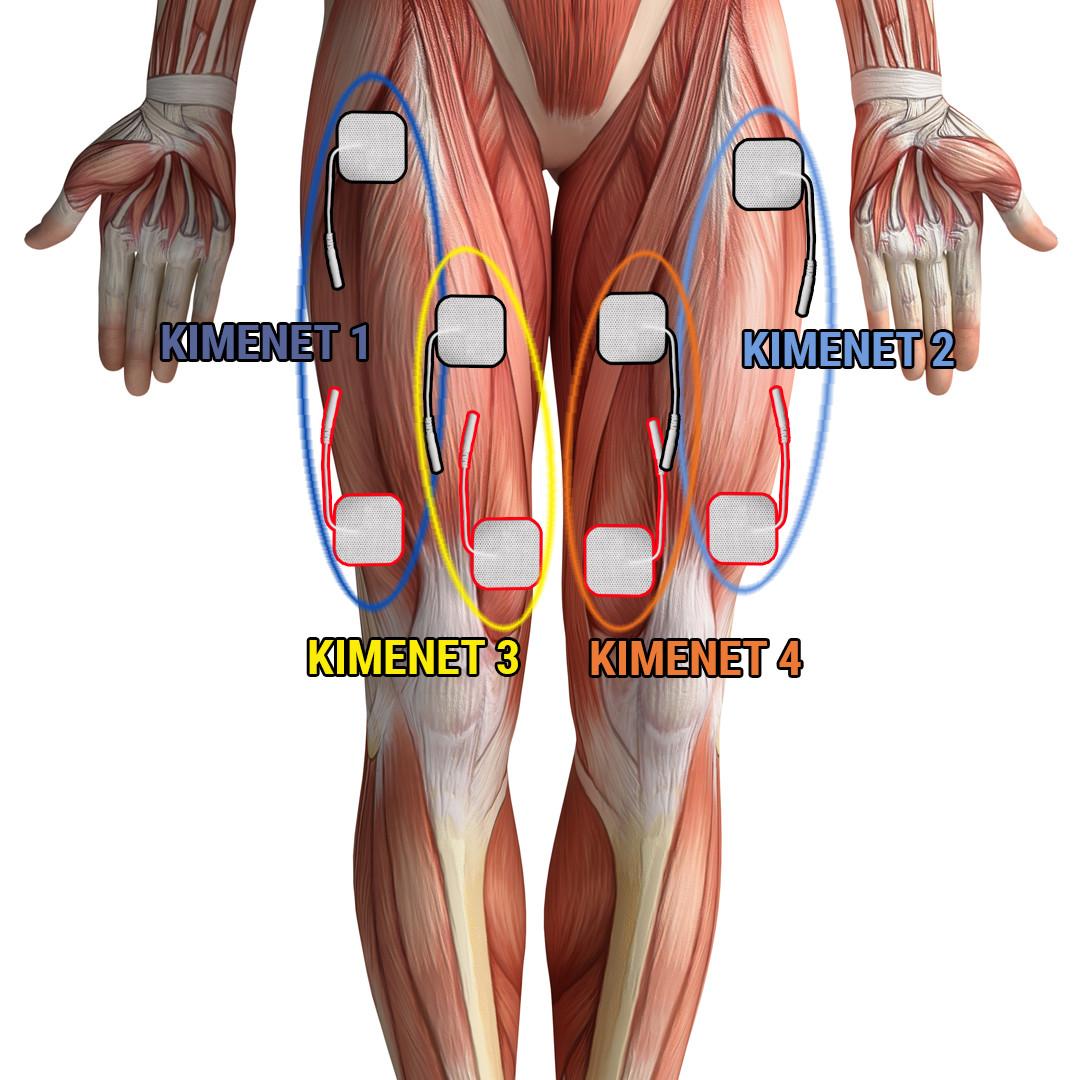 izom- és karfájdalom