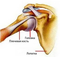 ízületi fájdalom csontfoltok)