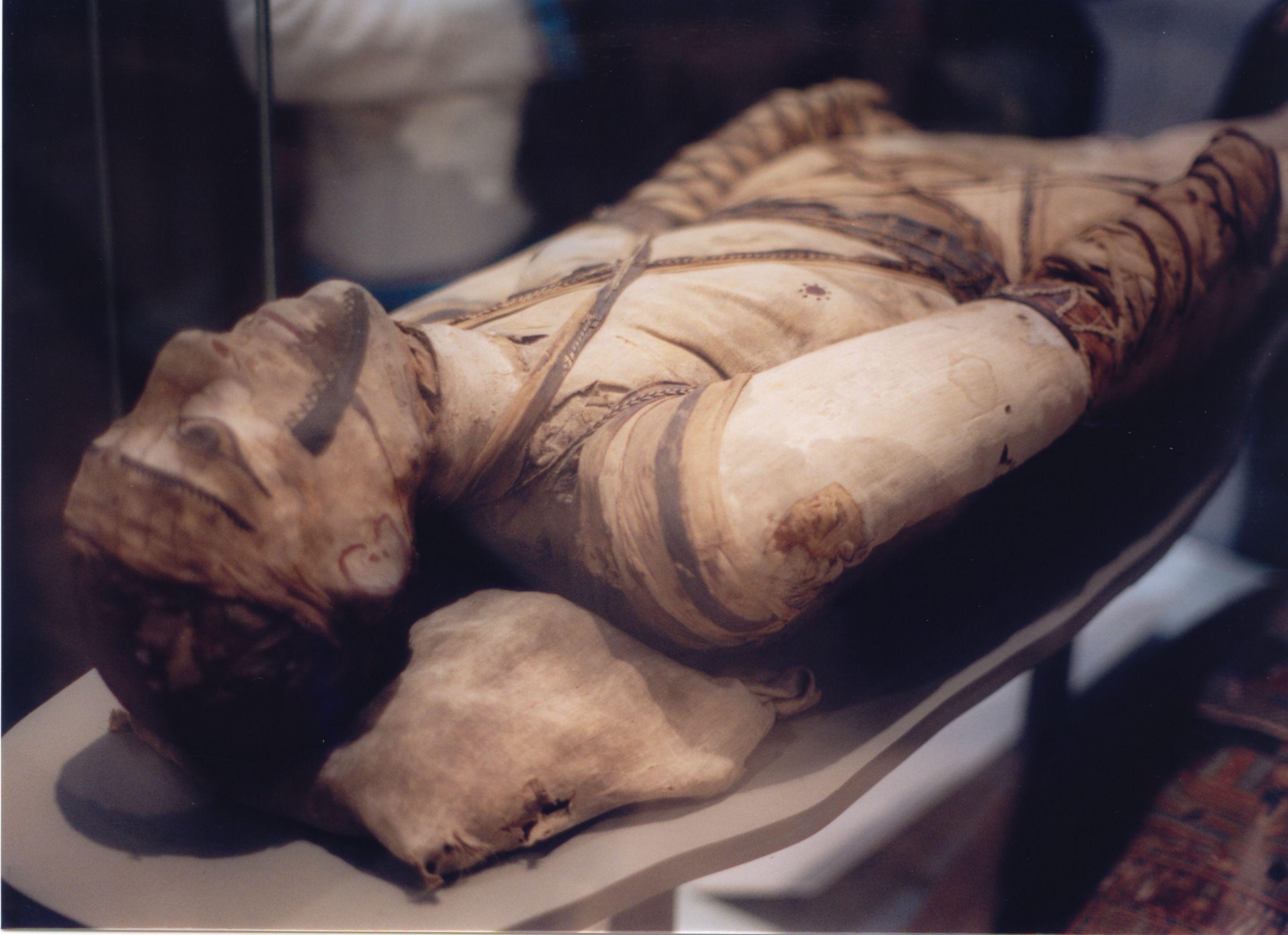 hogyan lehet múmiát ízületi fájdalmakhoz venni)