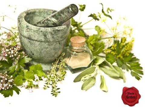 gyógynövény az ízületek kezelésében)