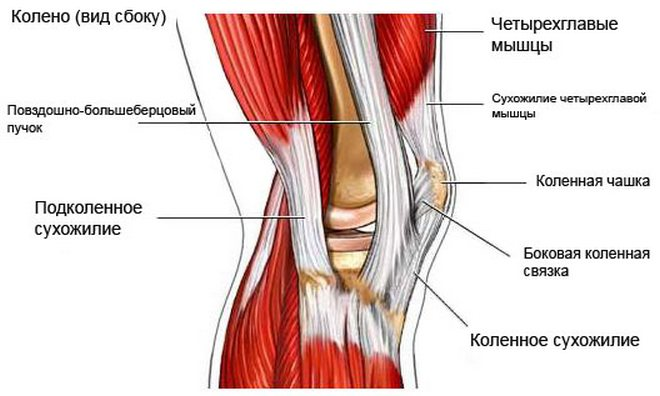 javasoljon injekciókat ízületi fájdalmak esetén