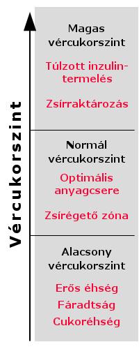 Fülakupunktúra - Lélekforma Mozgás és Szépségstúdió, Újpest Vachó Andi
