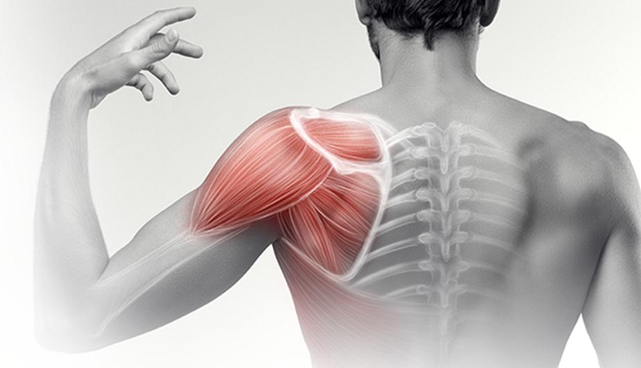 bioenergetikai közös krém vásárlás glükokortikoszteroid hormonok az artrózis kezelésében