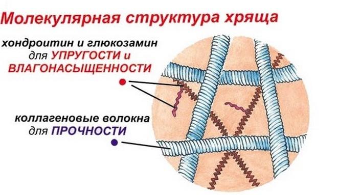 mi a jobb teraflex vagy glükozamin-kondroitin komplex)