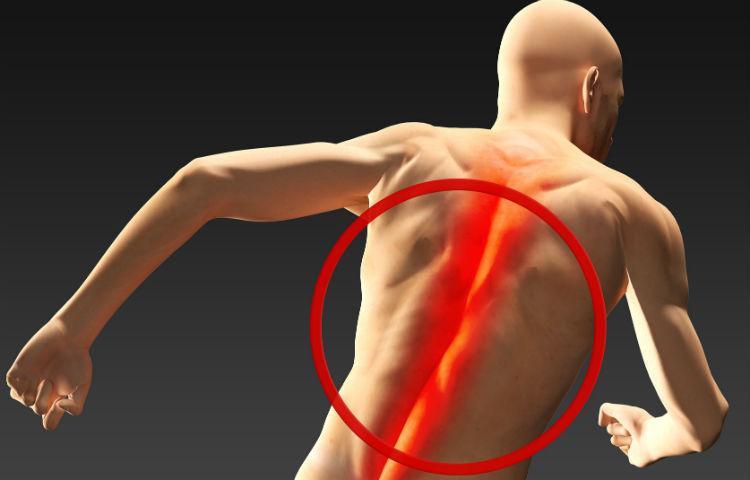 csípőízületek fájnak edzés után)