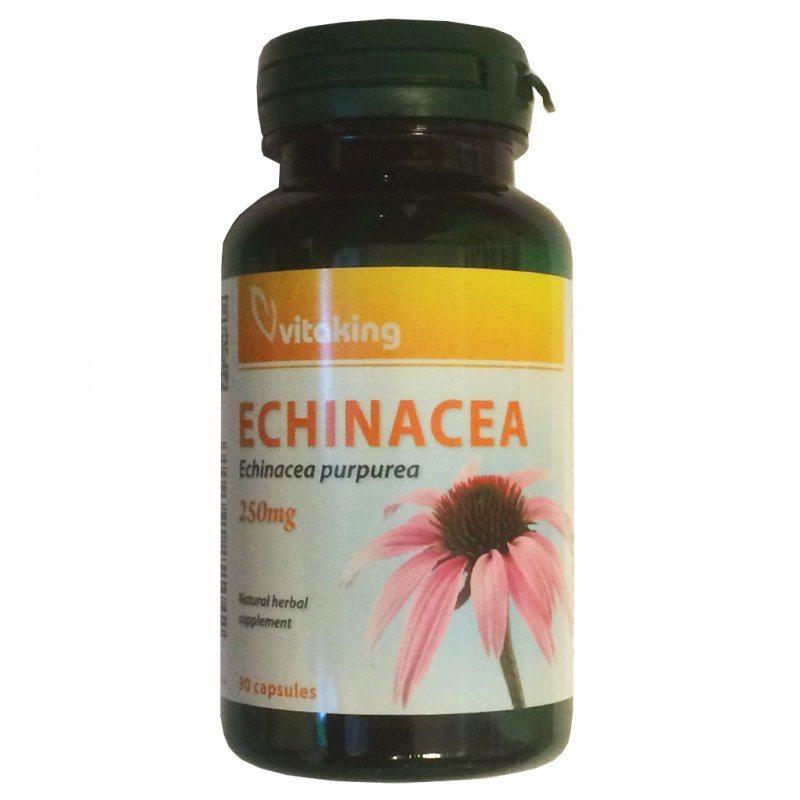 echinacea gyógyító tulajdonságai ízületi fájdalmak esetén
