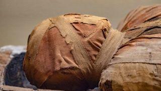 kezelés múmiákkal