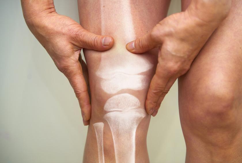 szúró térdfájdalom ízületi fájdalom a tacskókban
